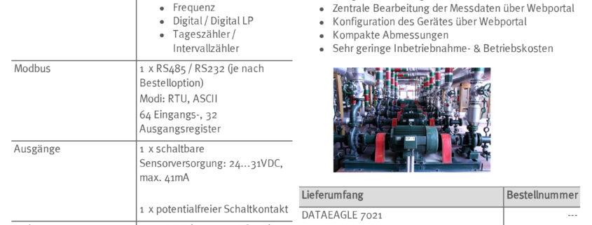 DATAEAGLE_7021_Fact_Sheet_de-Schildknecht-AG