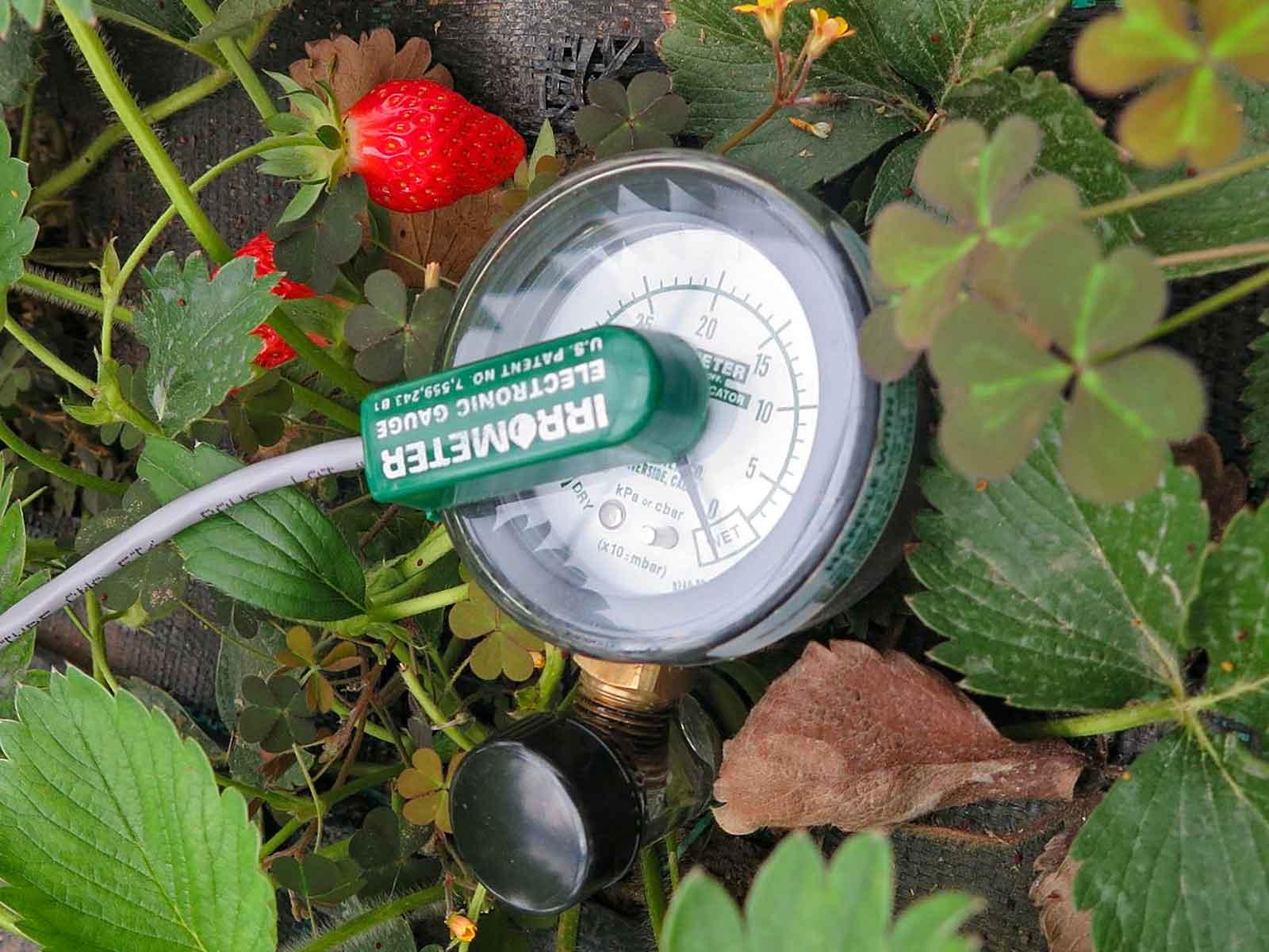 Condition Monitoring in der Landwirtschaft • Ein Tensiometer überwacht die Bodenfeuchte und sendet die Daten an das IoT Edge Gateway DATAEAGLE 7000.